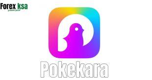 تحميل تطبيق Pokekara للاندرويد